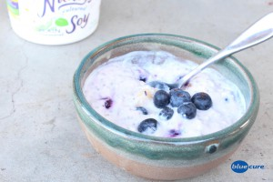 Yogurt-4web