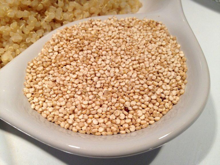 quinoa-405538_1280