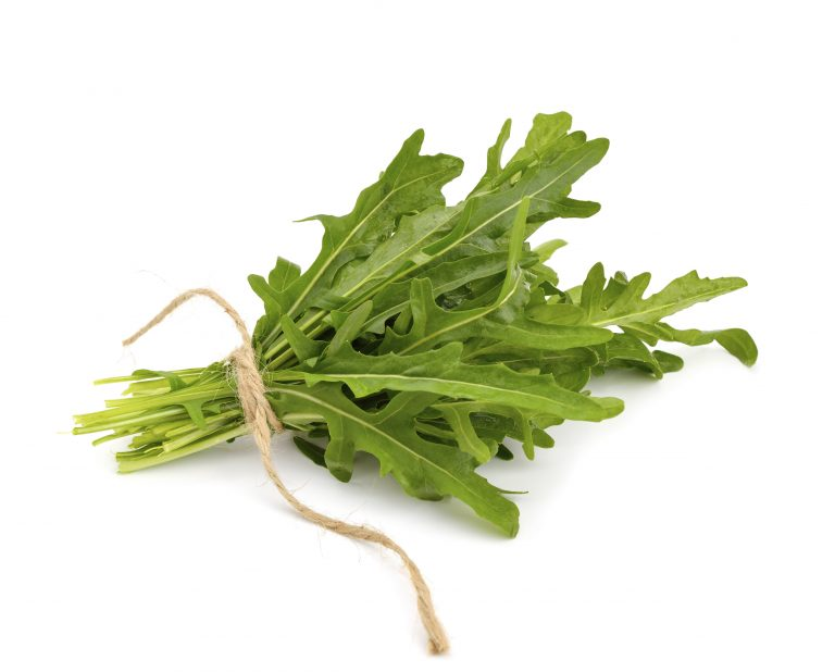 Arugula isolated on white background