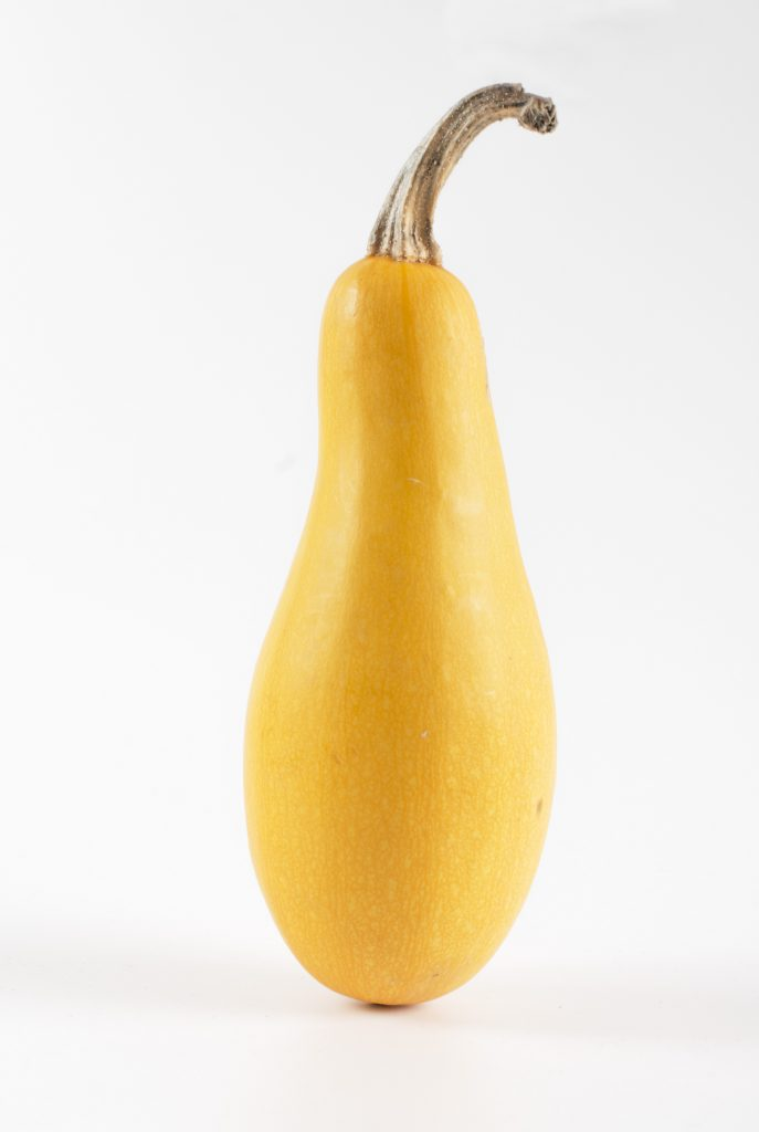 yellow squash pumpkin on white background
